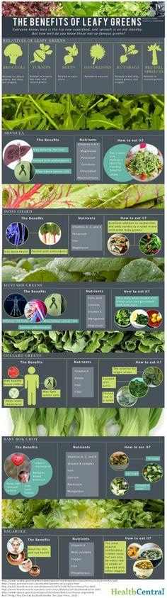 The Benefits of Leafy Greens (INFOGRAPHIC). - The benefits of leafy greens are wide-ranging, and they're a delicious addition to any diet. Discover these lesser-known greens whose nutritious punch may surprise you. - If you like this pin, repin it, like it, comment and follow our boards :-) #FastSimpleFitness