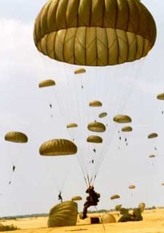 The Soldiers volunteer twice: first to join the Army, then second to jump out of a plane with a parachute. Airborne Army, 82nd Airborne Division, Airborne Ranger, Airborne Tattoos, Parachute Regiment, Military Drawings, Military Pictures, Army Mom, Paratrooper