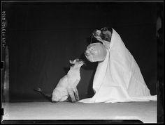 """Dog and Cat Enjoy Halloween"" 1940 photograph by Leslie Jones (1886-1967) via the Boston Public Library."