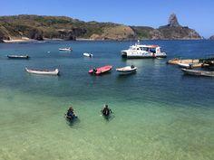 Curso de mergulho em Fernando de Noronha (foto: Ismael Escote)