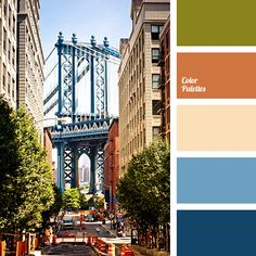 Nice contrast in these colors. Color Palette #1931