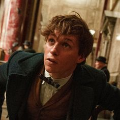 The First Trailer For Fantastic Beasts and Where to Find Them Is Here! #fantasticbeasts #trailers #jkrowling