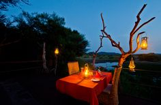 Overlooking one of the reserve's bigger waterholes, Tau Game Lodge is a well-positioned, privately owned accommodation option for families and groups of friends… North West Province, Game Lodge, Archaeology, Old Things, Africa, Table Decorations, Games, Home Decor, Decoration Home