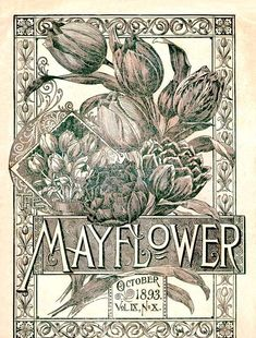 Mayflower, October 1893 Flowers and Seed Catalog