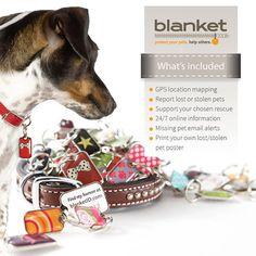 Trackable Pet ID Tags | blanket ID