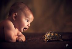 Cute kids and animals bathed in sunlight by Jake Olson