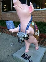 Image result for cincinnati pigs