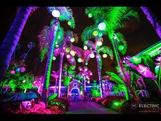 Electric Run Lace Up & Register! Electric Run Electric Run, Electric House, Glow Costume, Neon Run, Running Race, Local Events, Wedding Memorial, Cool Pools, Adventure Is Out There