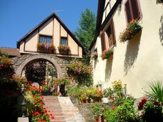 Kaysersberg 73 © French Moments | por French Moments