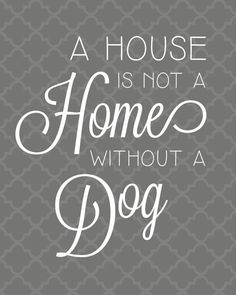 Printable 8x10 Dog Quote  A House is not a Home without a Dog. Dog Quotes by aprintabledesign, $6.50