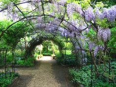 Favourite gardens Eccleston Square