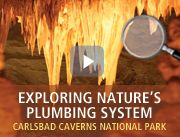 National Parks FREE Online Virtual Field trips, new ones added regularly.  Great site