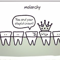 The molar hierarchy. Tooth funny!