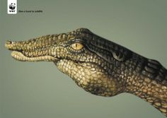 ¿Un animal? No, una mano  Estas obras de arte han sido creadas por el artista italiano Guido Daniele para ilustrar una campaña de World Wide Fund for Nature (WWF).