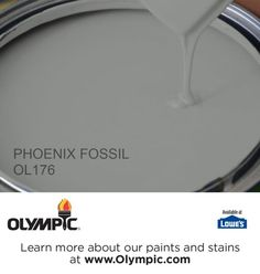 PHOENIX FOSSIL OL176 is a part of the grays & blacks collection by Olympic® Paint.