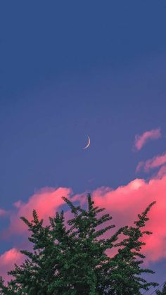 Cloud Wallpaper, Anime Scenery Wallpaper, Cute Wallpaper For Phone, Iphone Background Wallpaper, Aesthetic Pastel Wallpaper, Aesthetic Backgrounds, Aesthetic Wallpapers, Phone Backgrounds, Chat Wallpaper Whatsapp