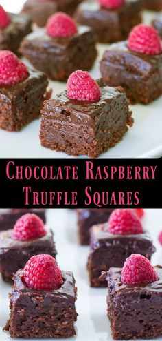 These Chocolate Raspberry Truffle Squares are pure bliss! Rich chocolate raspberry jam and a plump berry on every square combine to make the perfect dessert or treat. And they're so quick and easy to make! When you're craving chocolate make these squares! Mini Desserts, Rasberry Desserts, Easy Chocolate Desserts, Raspberry Recipes, Delicious Chocolate, Chocolate Recipes, Easy Desserts, Craving Chocolate, Oreo Dessert