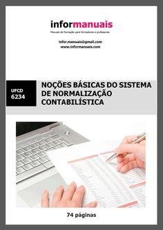6234. Noções básicas do sistema de normalização contabilística