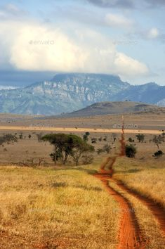 Red ground road and bush with savanna landscape in Africa by byrdyak. Red ground road and bush with savanna landscape in Africa. Kenya Travel, Africa Travel, Out Of Africa, Kenya Africa, South Africa, Mount Kenya, Wild Nature, Savannah Chat, Landscape Paintings
