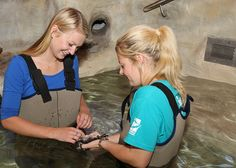 Give a platypus a tickel at Healesville Sanctuary! http://www.zoo.org.au/healesville/wild-encounters/wade-with-the-platypus