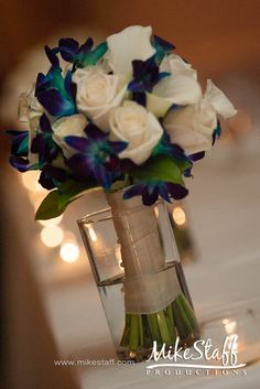 orchids and white roses. I like the mix of the dark blue and bright green