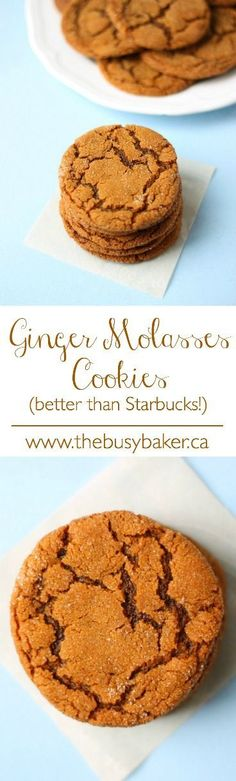 Ever Ginger Molasses Cookies (better than Starbucks!) The Busy Baker: Ginger Molasses Cookies (better than Starbucks!)The Busy Baker: Ginger Molasses Cookies (better than Starbucks! Cookie Desserts, Just Desserts, Cookie Recipes, Delicious Desserts, Dessert Recipes, Yummy Food, Yummy Cookies, Yummy Treats, Sweet Treats