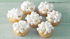 Nice treat: this is how you make these cute sheep (video) - Cupcakes Healthy Birthday Treats, School Birthday Treats, Birthday Candy, Sheep Cupcakes, Sheep Cake, Animal Cupcakes, Monster Cupcakes, Baby Cupcake, Cupcake Cakes