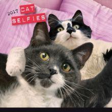 Cat Selfies 2017, Calendar