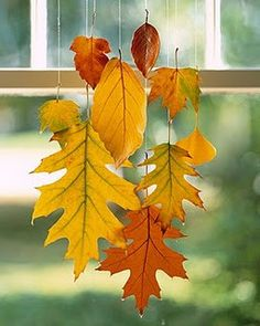 When dipped in wax, colorful leaves can be preserved through this season  beyond.