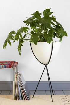 Hip Haven Tall Bullet Planter - Urban Outfitters