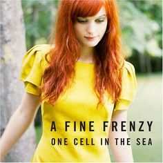 A Fine Frenzy | Love this album. And pretty much everything else she's made.