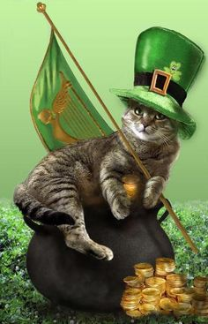 leprechuans shapeshift into cats
