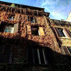 Foto scattata da Ferdinando Battiati con α7 II.           Sito Web: ferdinandobattiati.eu