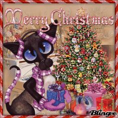 Meow X'mas   #CHRISTMAS CAT ~ using stamp Amy Lyn Bihrle's Art challenge