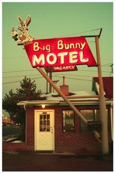 Big Bunny Motel, Denver