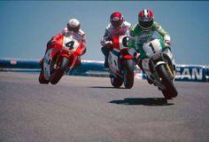 MotoGP anno