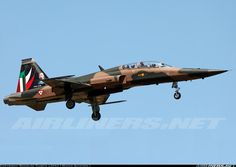 Mexican Air Force                                              401 Squadron, F-5 Bicentenario Comemmorative for Landing