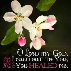 O LORD my God, I cried out to You, and You healed me. Psa 30:2. <3