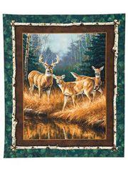 Wall of deer