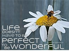 """Life doesn't have to be perfect to be wonderful."" ~ Annette Funicello"