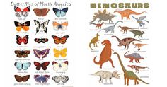 Small Adventure - special prints for kids' rooms #Alphabet, #Animals, #Bedroom, #Decor, #Dinosaurs, #Etsy, #Nursery, #Paper, #WallArt