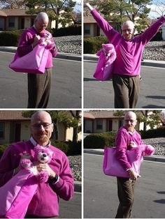 Out-take photos of Bryan Cranston and the iconic pink bear from Breaking Bad. Funny Images, Funny Photos, Breaking Bad Cast, Pink Wallpaper Girly, Bryan Cranston, Walter White, S Pic, Favorite Tv Shows, I Movie