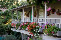 Carmel Country Inn in Carmel, California | B&B Rental