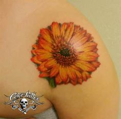 gerbera daisy tattoos pictures - Yahoo Search Results