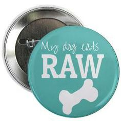 """Show off your dog's healthy diet with this pin - click the pic to see more raw dog food designs in my shop *Waggy tail*  My Dog Eats Raw Food 2.25"""" Button"""