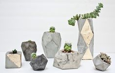 little concrete planters.