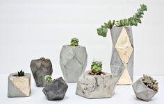 little concrete planters.