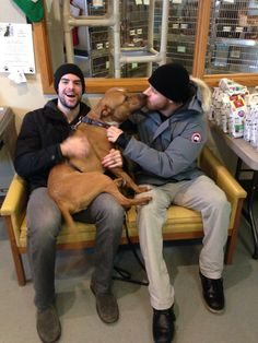 """Drew Stafford and Steve Ott from the Buffalo Sabres  stopping by with donations for our shelter animals! They received a lot of love from their four legged fans, especially Gambler!  City of Buffalo Animal Shelter"""