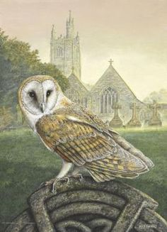 'Hushwing in Churchyard' Beautiful full colour greetings card, painting by wild-life artist, Dick Twinney. Available from the Barn Owl Trust On-Line Shop: http://www.barnowltrust.org.uk/product_dets.html?Id=125#