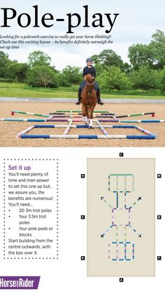 Horse Riding Tips, Horse Tips, Trail Riding, Horse Training, Training Tips, Training Exercises, Horse Barns, Horses, Horse Exercises